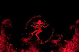 Swami Lushbeard - Fire