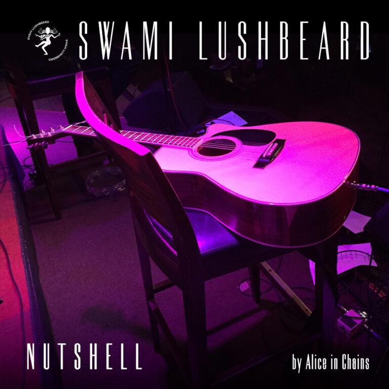 "Swami Lushbeard - ""Nutshell"" Cover Art"